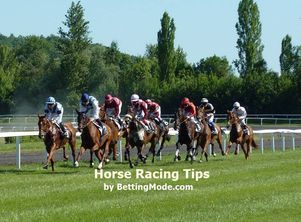 Horse racing betting tips for beginners investing in crypto currency converter